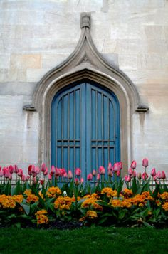 Spring flowers and blue door Photography at ArtistRising.com