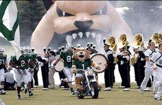 Ohio Bobcats - mascot Rufus
