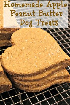 Homemade Apple Peanut Butter Dog Treats- healthy and delicious and so much better than store bought! Your furry friends will go crazy for them! Please make sure there is no xylitol or palm oil in the peanut butter. Puppy Treats, Diy Dog Treats, Healthy Dog Treats, Horse Treats, Dog Biscuit Recipes, Dog Treat Recipes, Dog Food Recipes, Dog Cookie Recipes, Apple And Peanut Butter