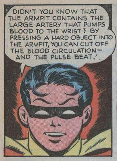 DC Comics. ROBIN. RED ROBIN. NIGHT WING.The Boy Wonder. - Minus.com
