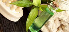 Tea Tree Oil: The Skin Miracle