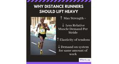 Why Distance Runners Should Lift Heavy | STACK Muscular Strength, Muscular Endurance, Weight Training, Weight Lifting, Strength Training For Runners, Muscular System, After Running, Get Toned, Lift Heavy