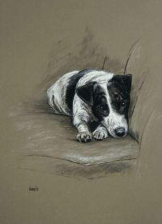 Beautiful Jack Russell Terrier dog LE fine art print by Terriers