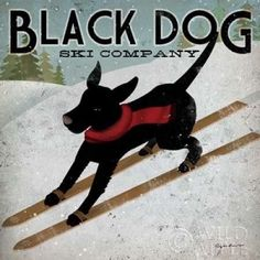 Black Dog Ski Canvas Art - Ryan Fowler (24 x 24)