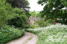 Upper Slaughter in the Cotswalds (the house! the lawn! the flowers!)  from the excellent myporchblog.blogspot.com