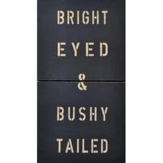 Would be cute for my little bunny... Bright Eyed & Bushy Tailed Antiqued Sign   Antique Signs   Oh Baby Style