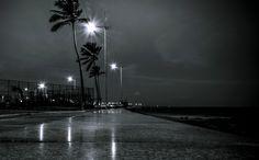 Jardim dos Namorados by Arsenio Coelho on 500px