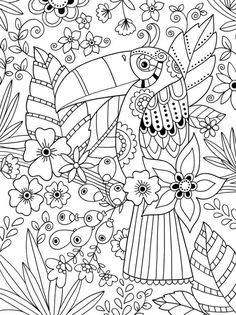 colouring toucan colorir coloriage