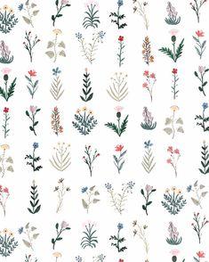 Flowers illustration tattoo sketch 68 ideas for 2019 Illustration Blume, Botanical Illustration, Illustration Fashion, Illustration Artists, Flower Tattoos, Small Tattoos, Flower Patterns, Flower Designs, Print Patterns