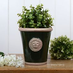 Kew Long Tom Pot in Dark Country Green - Royal Botanic Gardens Plant Pot in small from www.interiorgifts.co.uk
