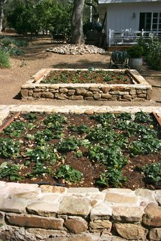 Love these stone raised garden beds