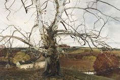 Andrew Wyeth Collection | Brandywine Conservancy and Museum of Art