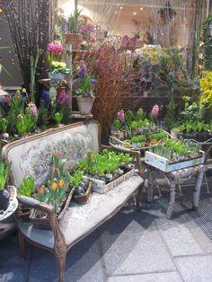 floral shop in Paris *-* Love it! ▾ ๑♡ஜ ℓv ஜ ᘡlvᘡ༺✿ ☾♡·✳︎· ♥ ♫ La-la-la Bonne vie ♪ ❥ Fresh Flowers, Beautiful Flowers, Flower Shop Design, Flower Market, Flower Shops, Paris Shopping, Deco Floral, Garden Shop, Shop Interiors