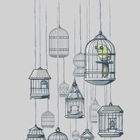 Birdcages. Sweet illustration.