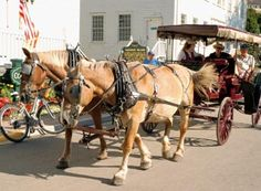 A horse-drawn carriage ride on Mackinac Island. #puremichigan