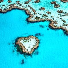 Love and the Great Barrier Reef #love #romance #reef #greatbarrierreef #queensland #qld #australia #ocean #sea #summer #swim #dive #snorkel #sail #nature #outdoors #travel #wanderlust #beauty #beautiful #instalike #photooftheday #escape #blue #holiday #vacation #inspo #inspiration by lover_ofbeauty http://ift.tt/1UokkV2