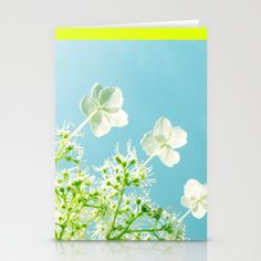3x stationery cards by Cally Creates on Society 6. Retro tint Hydrangea petiolaris - climbing Hydrangea. Creamy white flowers in June like little floral fireworks against the blue Sky.