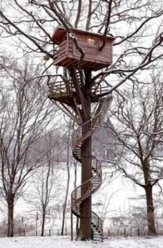 So damn cool! Treehouse. Wish I coulda played in this as a kid.