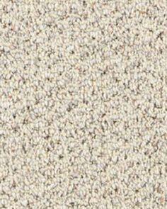 Soft Shaw Carpet. You gotta love the Neutrals.