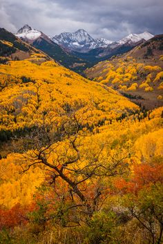 Autumn, The Rockies, Colorado