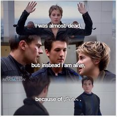 Find images and videos about divergent and insurgent on We Heart It - the app to get lost in what you love. Tris Y Tobias, Peter Divergent, Divergent Memes, Divergent Factions, Divergent Hunger Games, Divergent Fandom, Divergent Trilogy, Insurgent Movie, Divergent Insurgent Allegiant