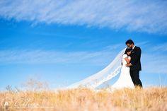 Rubina & Stephen:Bride & Groom Portraits at The Arbor Hills Nature ...