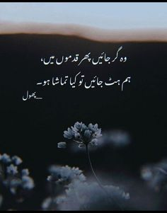 Funny Quotes In Urdu, Poetry Quotes In Urdu, Best Urdu Poetry Images, Urdu Poetry Romantic, Love Poetry Urdu, Qoutes, Image Poetry, Poetry Pic, Soul Poetry