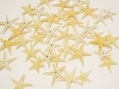 Dancing Starfish Real Starfish Wedding Decor by SeasideImpressions, $3.00