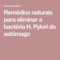 Remédios naturais para eliminar a bactéria H. Pylori do estômago