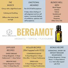 Essential Oil Patchouli Tips And Techniques For Patchouli Essential Oil benefits Bergamot Essential Oil Uses, Essential Oils For Pain, Ginger Essential Oil, Essential Oils Guide, Essential Oil Diffuser Blends, Doterra Essential Oils, Clary Sage Essential Oil, Bergamot Oil Benefits, Cypress Essential Oil