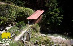Puente del Purgatorio Alejandria - Antioquia. Una de las atraccciones de Golden Elephant Hostel
