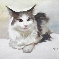 Watercolour of Cat by Yong Chen