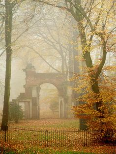 I so love fog and old,old cemetaries  and this reminds me of the one that  I frequented in New England with my beloved huskie.