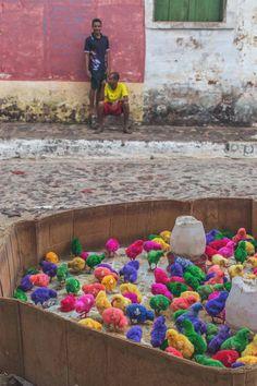 Dyed chicks in Alcântara - Brazil | heneedsfood.com