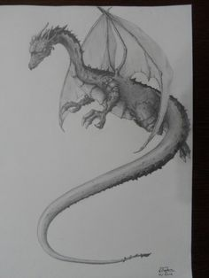 dragon pencil drawing by Voiculescu Bogdan