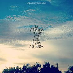 #frases #frasesenespañol #inspirational #wordstoliveby #amor #miedo