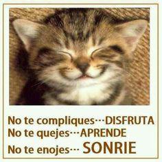 #Citas No te