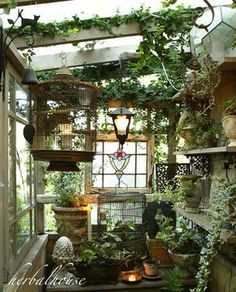 """Learn additional relevant information on """"greenhouse ideas"""". Look at our web site. Garden Cottage, Home And Garden, Outdoor Rooms, Outdoor Living, Greenhouse Interiors, Greenhouse Gardening, Greenhouse Ideas, Urban Gardening, Indoor Gardening"""