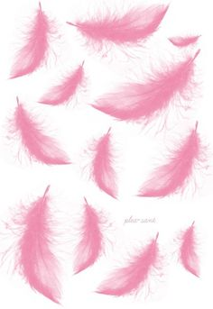 ∑∑☪ Pink Angel Wing Feathers