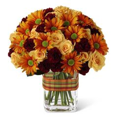 Autumn Sunshine Bouquet This bouquet is full of sunshine and is great to celebrate the arrival of Fall. Peach Spray Roses, burgundy Mini Carnation's, and yellow Daisies arranged in a clear glass vase accented with a ribbon. Thanksgiving Flowers, Mini Carnations, Fall Bouquets, Flower Bouquets, Same Day Flower Delivery, Autumn Garden, Fall Flowers, Amazing Flowers, Floral Arrangements