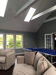 Bonus room with vaulted ceiling and skylights.