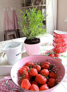 Villa ✪ Vanilla: Erdbeer-Rosa
