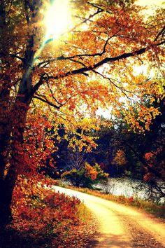 Stunning Fall Visual!!