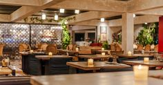 Balux Cafe - The House Project | Papatheoharis Group of Companies