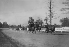 Wfa072 - Harness racing - Wikipedia, the free encyclopedia