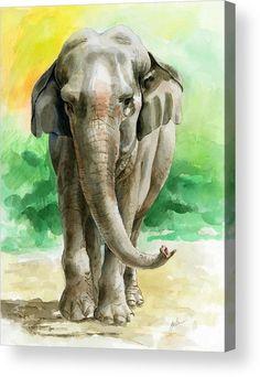 Animal Art Prints, Animal Paintings, Animal Posters, Watercolor Animals, Watercolor Paintings, Elephant Watercolor, Watercolours, Oil Paintings, Elephant Artwork