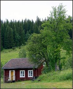 Sweden  The summer cotttage just like my ancestors farm.  The emigrants brought the red powder to make the paint and many of the red barns in the midwest were painted by the Swedish emigrants.