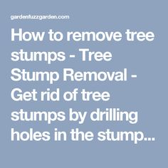 How to remove tree stumps - Tree Stump Removal - Get rid of tree stumps by drilling holes in the stump and filling them with 100% Epsom salt. Follow with water, and wait. Live stumps may take as long as a month to decay, and start to decompose all by themselves. - gardenfuzzgarden