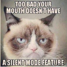Grumpy Cat meme #GrumpyCat #humor http://tomblubaugh.com