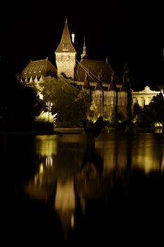 Castle at night....